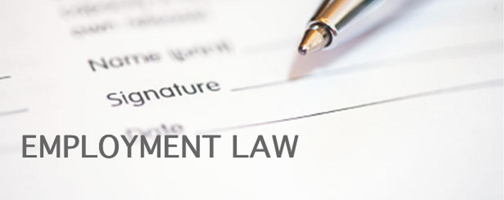 Employment Law Blake Turner