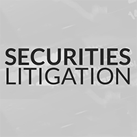 Securities Litigation Blake Turner