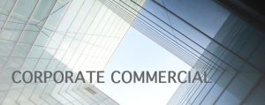 Blake-Turner Corporate Commercial Solicitors Shareholders Agreements